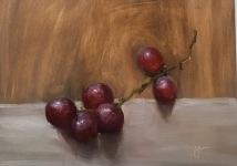 Study of red grapes , oil