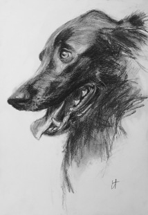 George, charcoal on paper