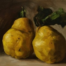 Quinces, oil on panel, SOLD